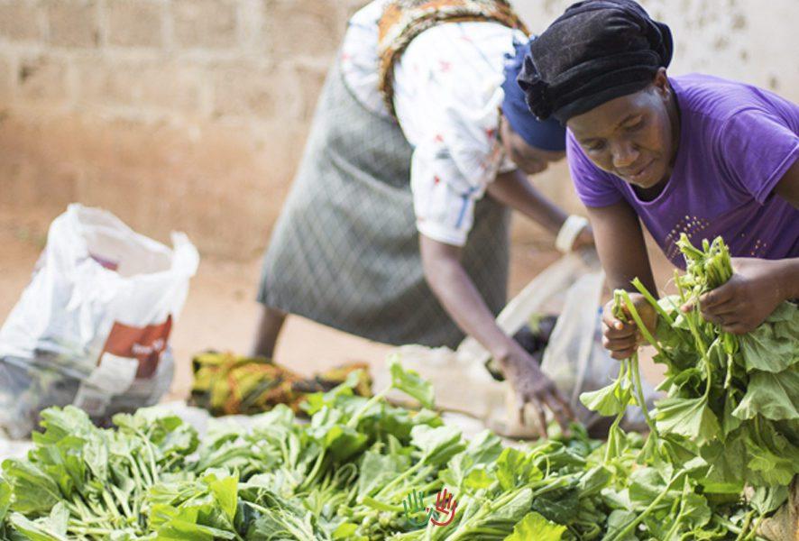 La realidad laboral en Zambia